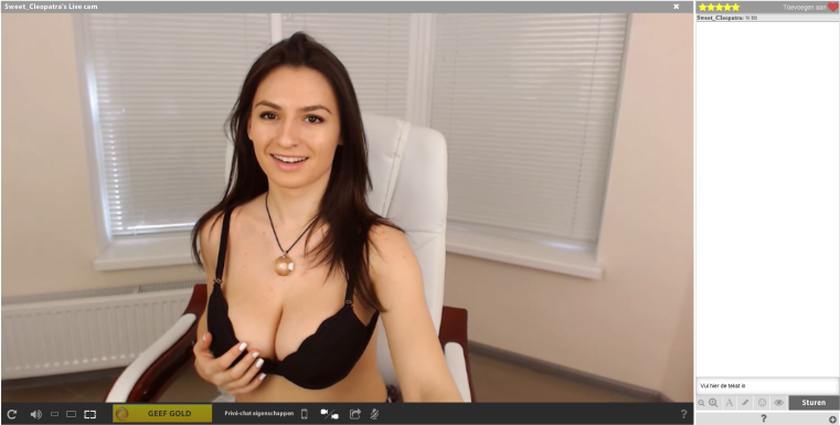 screenshot privechat streamate